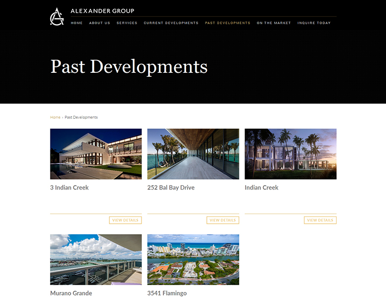 Alexander Group Development